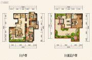 金龙星岛国际5室3厅3卫0平方米户型图