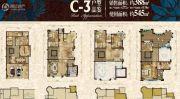 金辉城江城著4室2厅3卫388平方米户型图