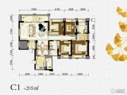 绿地锦天府0室0厅0卫205平方米户型图