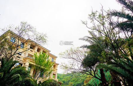 湘域中央墅