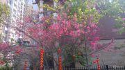 优悦城外景图