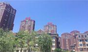 金地锦城实景图