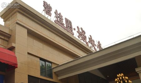 碧桂园・城央壹品