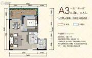 万旭涵碧公馆1室2厅1卫56平方米户型图