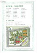 时代花城规划图