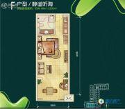 夏都海岸1室1厅1卫46--53平方米户型图
