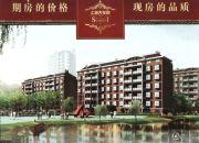 上海大花园 多层效果图