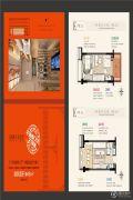 龙湖北城天街1室1厅1卫46平方米户型图