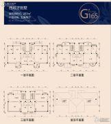 碧桂园凤凰城5室2厅0卫257平方米户型图