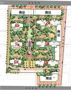 金辉C园规划图