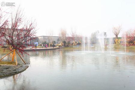 碧桂园・凤凰城