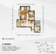 白金壹号3室2厅2卫115--1115平方米户型图