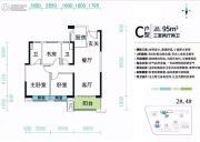 碧桂园星城首府3室2厅2卫95平方米户型图
