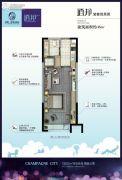 保利・香槟国际1室1厅1卫46平方米户型图