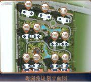 碧桂园・凤凰湾规划图