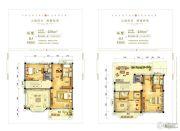 揭阳碧桂园430平方米户型图