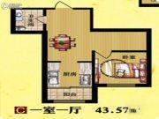 东方・新湖俪城1室1厅1卫43平方米户型图