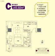 星颐广场1室1厅1卫43平方米户型图