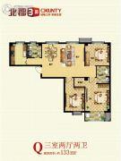 北郡帕提欧3室2厅2卫133平方米户型图