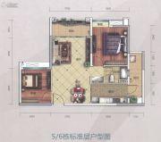 萝岗奥园广场2室2厅1卫79平方米户型图