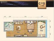 时代中心1室1厅1卫47平方米户型图