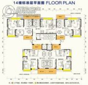 开平・东汇城84--120平方米户型图