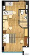 九洲新世界1室1厅1卫48平方米户型图