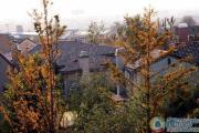 珠江・紫宸山外景图