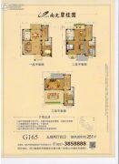 南充碧桂园5室2厅4卫251平方米户型图