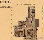 奕聪花园3室2厅4卫243平方米户型图