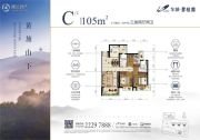 东城碧桂园3室2厅2卫105平方米户型图