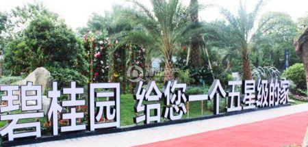 中山碧桂园天玺湾