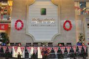 荣民宫园中央实景图