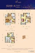 碧桂园九龙湾4室2厅4卫243平方米户型图