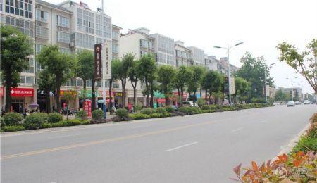 金泰滨江花城