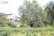 托斯卡纳・四季城实景图