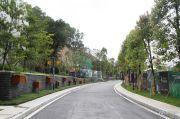 岭南林语实景图