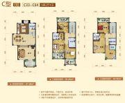 阳西温泉城234平方米户型图