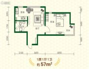 丽江苑1室1厅1卫57平方米户型图