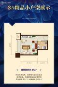 恒大御景半岛1室1厅1卫35平方米户型图